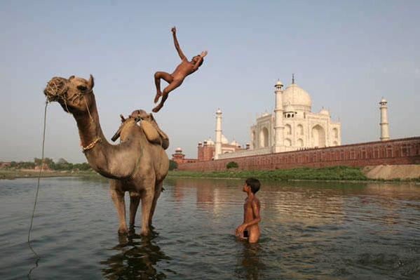 http://ljplus.ru/img/d/a/dashing/060705_india.jpg