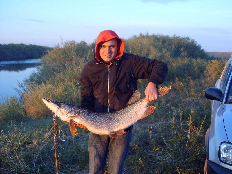 истории на рыбалке