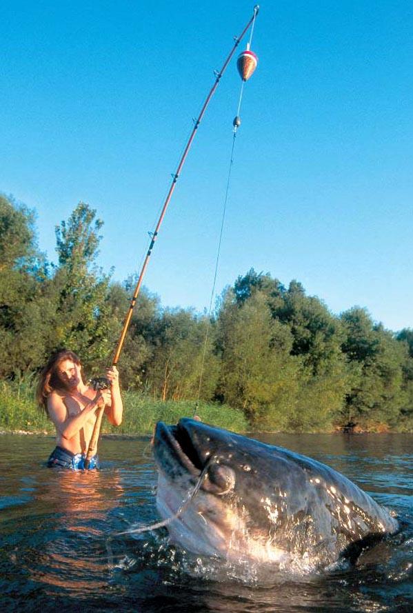 яндекс все про рыбалку