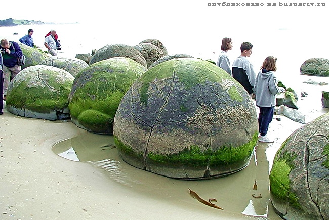 туристы на Моераки