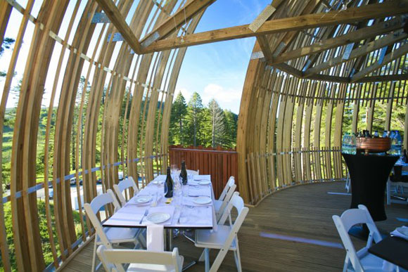 treehouse 221208 05 Yellow Treehouse Restaurant.