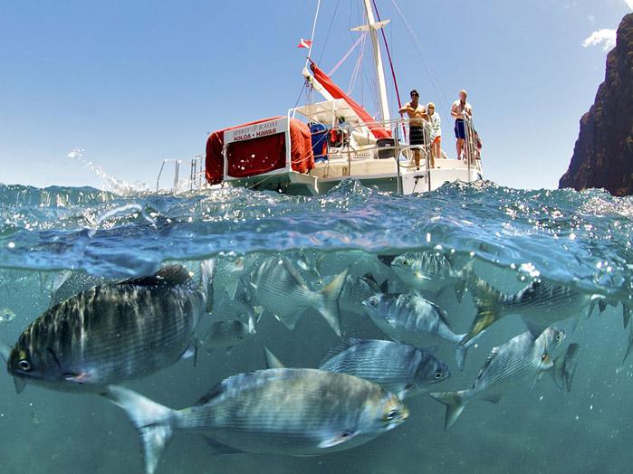 передачи про рыбалку на national geographic