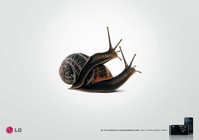 MEDIUM LG Snail Slow home video