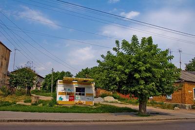 Житомир. Улица Якира