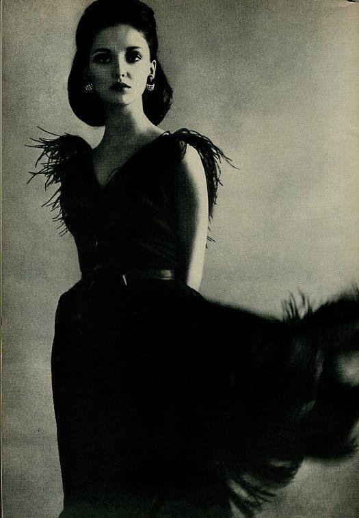 donna mitchell model