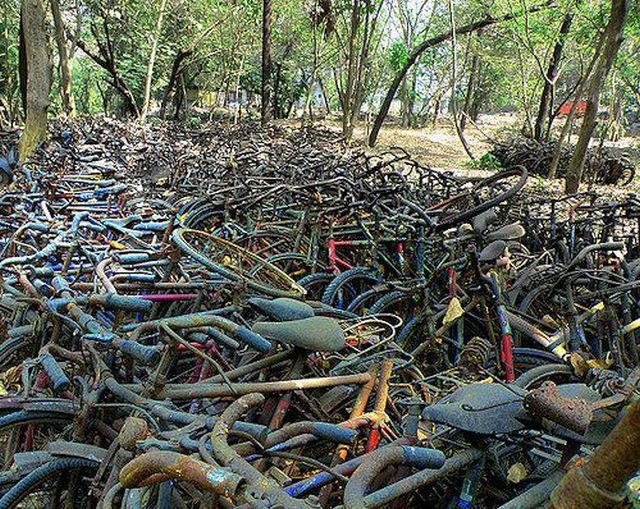 bike_trash.jpg