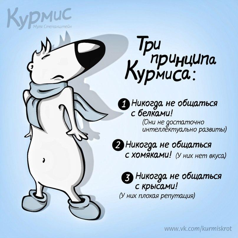 Блоги. Курмис Крот. Курмис