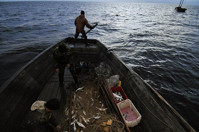 ильмень рыбалка прогноз клева