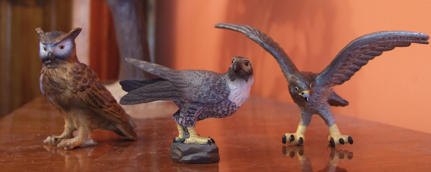 My first CollectA animals: the Beautiful Five 100812_Collecta_falcon_threesome