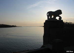 Елагин, львы, апрель, закат
