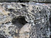 Камень, на котором разложил припасы