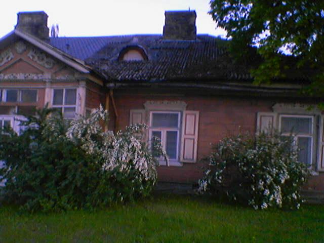 Blossoming Vilnius