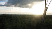 Вид со смотровой вышки на лес Видземе. Бескрайняя Латвия :)