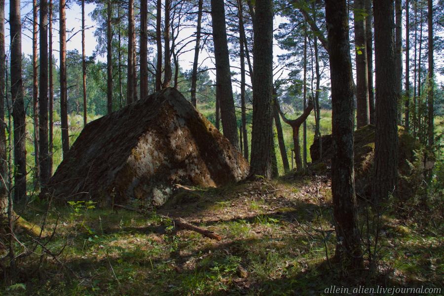Бетонные глыбы в лесу – следы взрыва арсенала в 1918 году