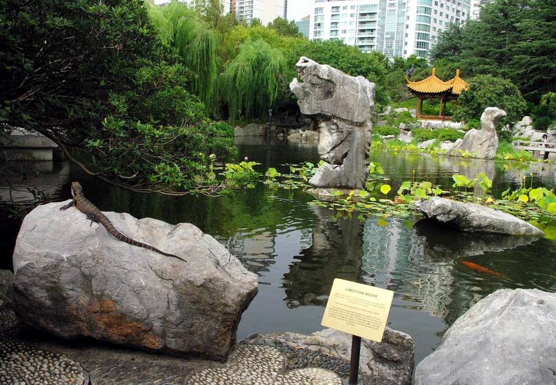 Сидней китайский сад