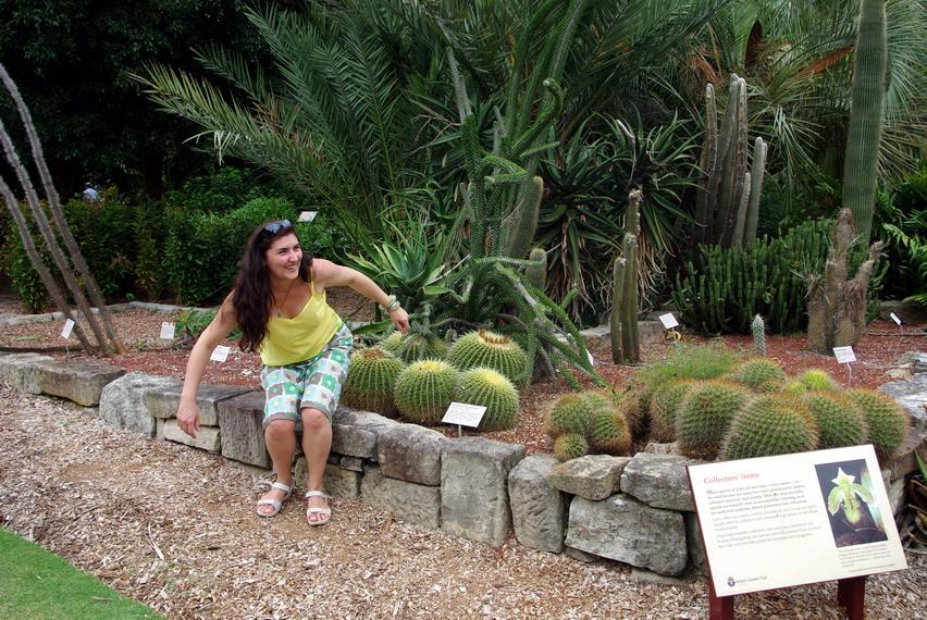 ботанический сад, Сидней, Австралия
