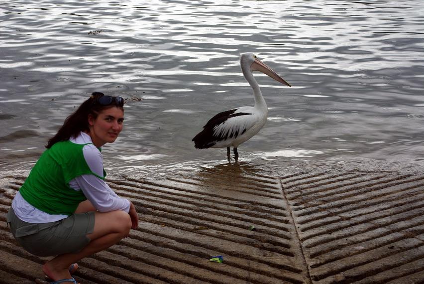 Киама, Австралия